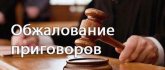 obzhalovanie-prigovora-suda-po-ugolovnomu-delu